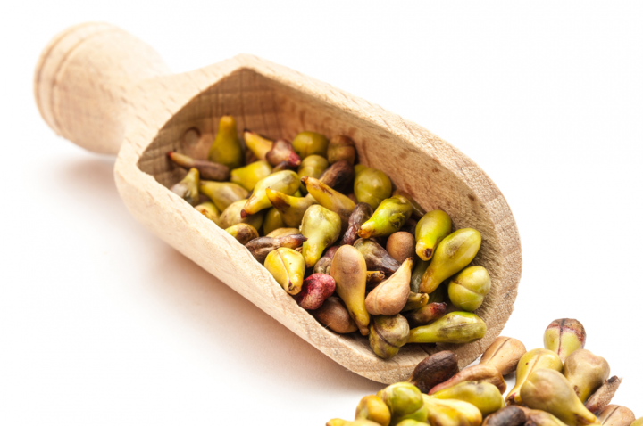 seeds-gallery.png